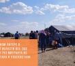 В палаточном лагере в самарской области все еще находятся 793 мигранта из Таджикистана и Узбекистана.