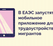 В ЕАЭС запустят мобильное приложение для трудоустройства мигрантов.