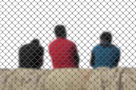 Валентина Чупик: Запреты, депортации, выдворения (видео).